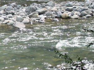 Сказка о Конце света, природе и доме. Река.