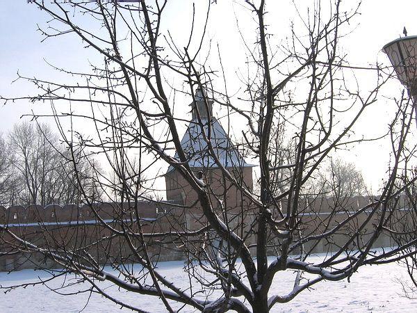 Дерево в кремле
