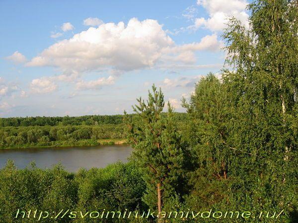 Берёзы, сосны, небо, река