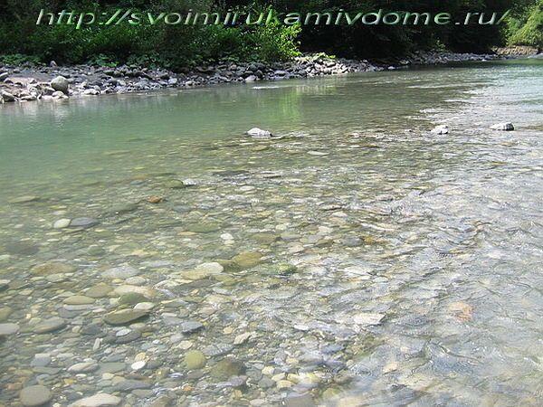 Горная река в Сочи