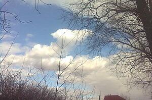 Участок весной