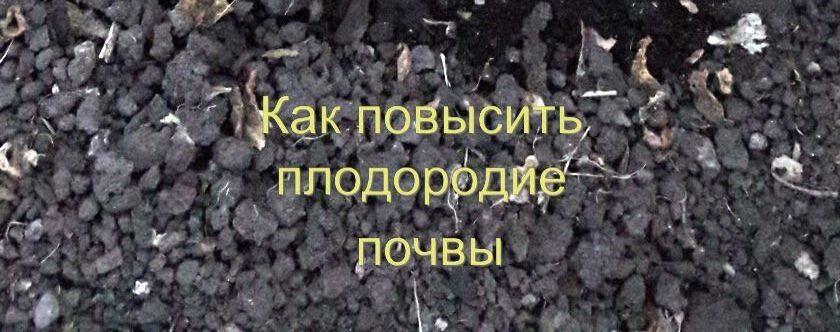 Почва (земля) в теплице