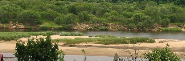 Природа у реки. Унжа — фото