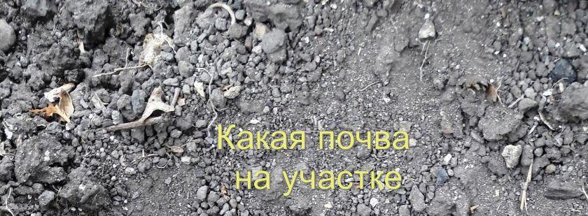 Почва, земля