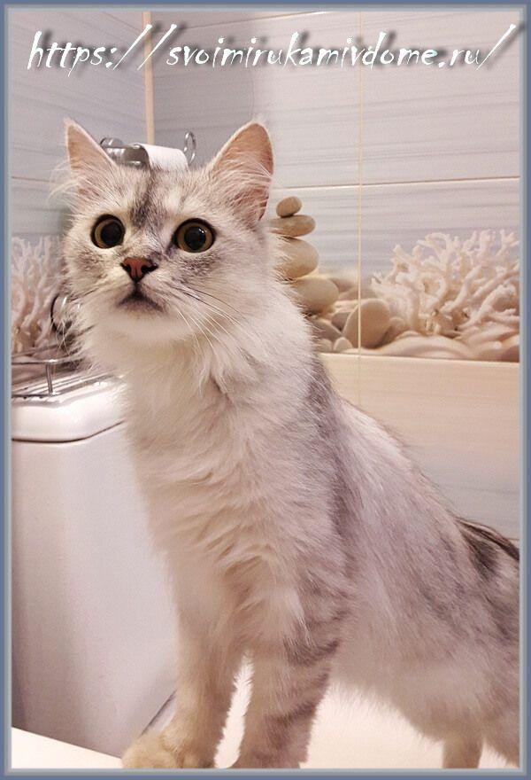 Любопытная Дуся в ванне