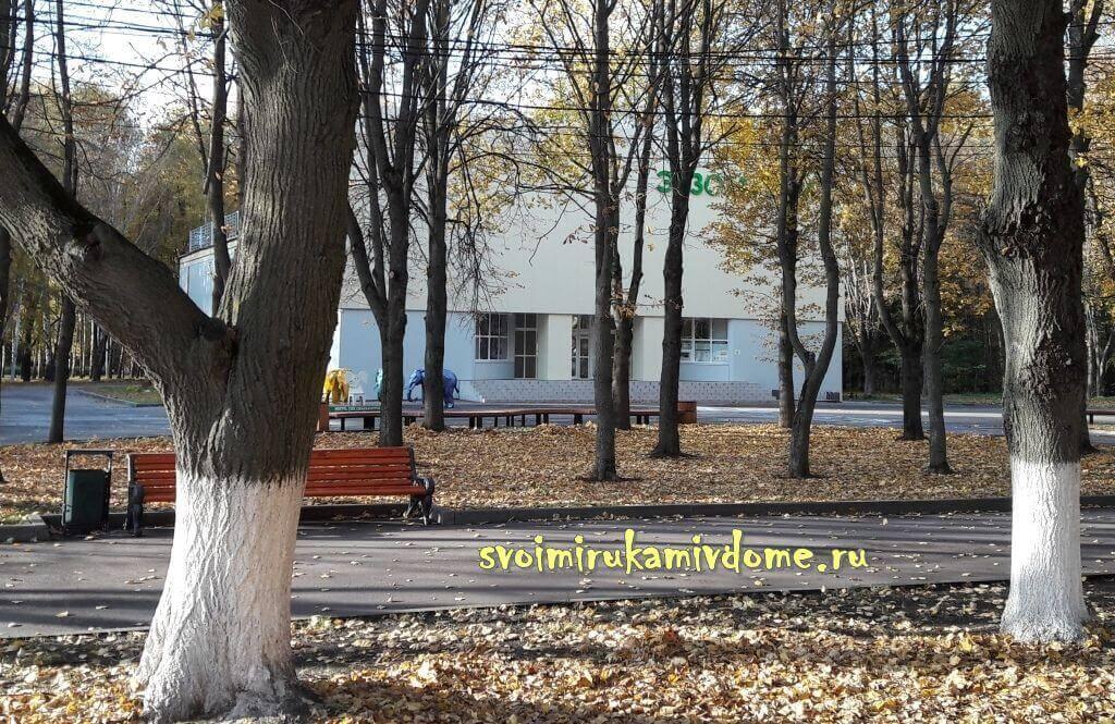 Экзотариум в парке Белоусова Тулы
